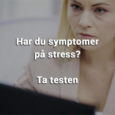 Stresstest - test stress